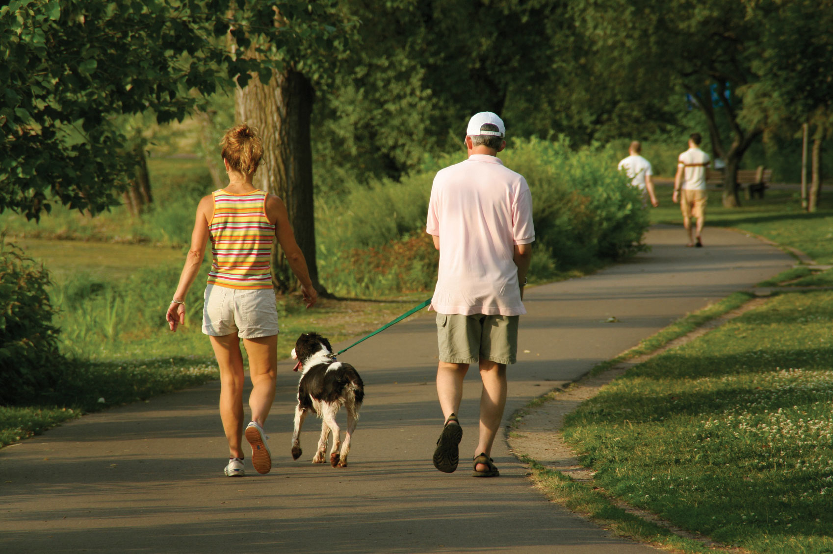 walking your dog to lose weight